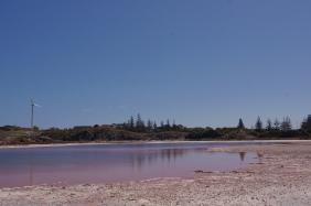 Notre premier lac rose