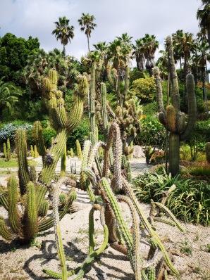 Mossen Costs I Llobera parc aux cactus Barcelone